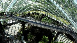 """A sustentabilidade e a reinvenção do """"novo normal"""""""